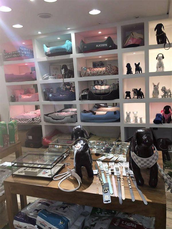 Boutique de Luxo para Cachorros em Biritiba Mirim - Serviço de Boutique para Cachorros