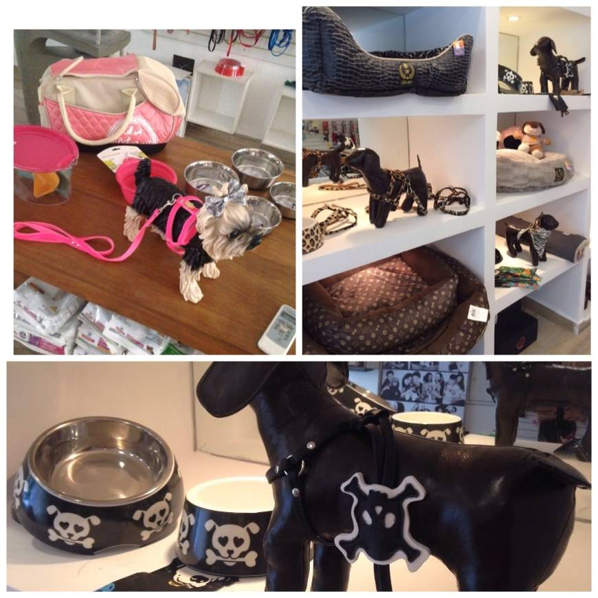 Empresa de Boutique para Cães na Vila Leopoldina - Clínica e Boutique para Cães