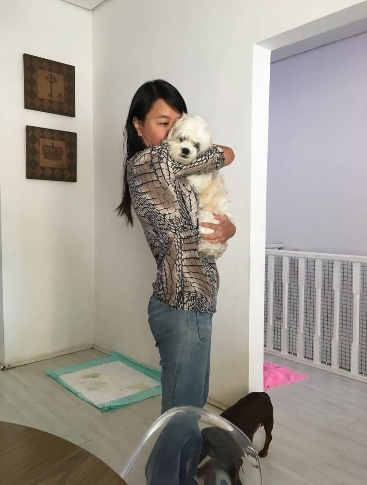 Fisioterapia Animal no Capão Redondo - Fisioterapia Canina em Sp