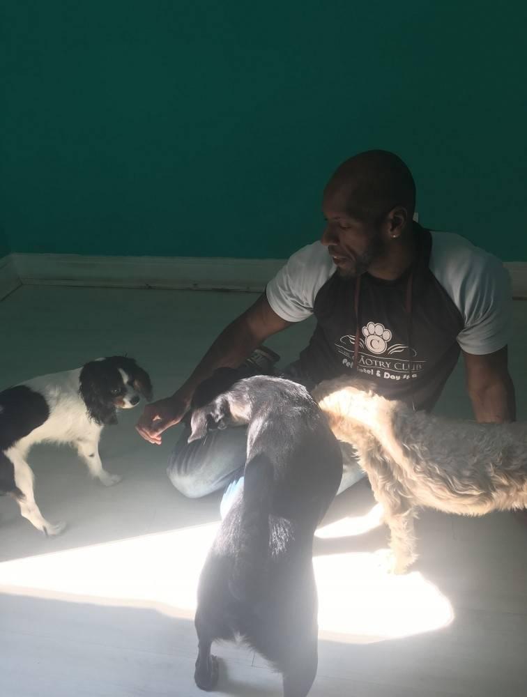 Hotel de Cachorro na Pedreira - Hotel para Cães