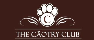 escola para adestramento de cães - The CãoTry Club Grupo