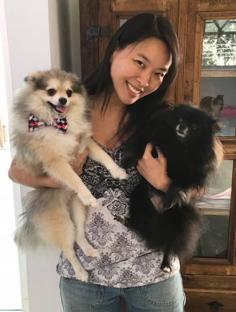 Serviços de Fisioterapia Canina Preço na Vila Maria - Fisioterapia Canina na Vila Mariana