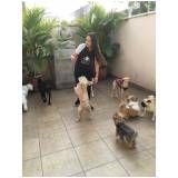 creche hotel para cães preço no Alto de Pinheiros