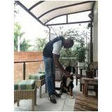 cursos de adestramento de cachorros no Parque do Carmo