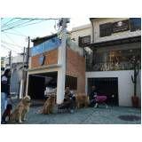 espaço creche para cachorros em Franco da Rocha