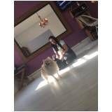 espaço creche para cães em Glicério