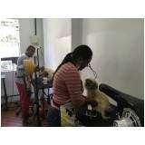 formação profissional para banho e tosa preço em Guararema