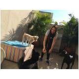 hotel para cachorro preço em Mauá