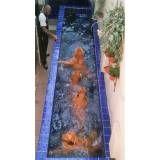 natação para pet em Perus