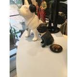 pet shop em sp preço na Anália Franco