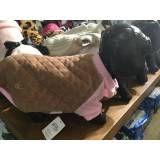 Pet Shop para Cães