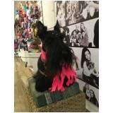 serviço de boutique para cachorros no Itaim Bibi
